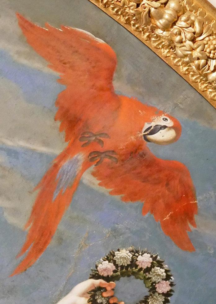Papagei Nymphenburg Fresko